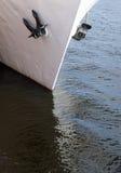 Navio branco com duas escoras Imagens de Stock Royalty Free