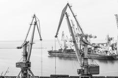 Navio de carga e guindastes industriais em Marine Trade Port Imagens de Stock Royalty Free
