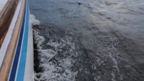Navio nas ondas Ondas causando um crash video estoque