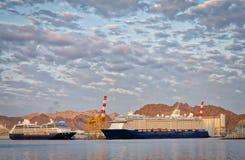 Navios de cruzeiros no porto Fotografia de Stock Royalty Free