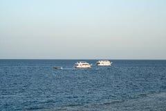 Navios no mar barco da velocidade no Mar Vermelho Fotos de Stock Royalty Free