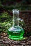 Navire en verre avec le breuvage magique de fines herbes vert dans les bois sur le tronc Image libre de droits