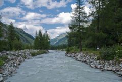 The Navisence river. The Navissence river is the result of the melting ice of the Zinal Glacier, in the Alps mountains. It crosses a beautiful valley with the Royalty Free Stock Photography