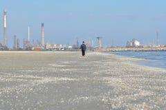 Navodari raffinaderi som ses från stranden royaltyfri foto