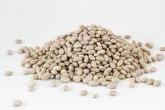 Navy beans. Heap of navy beans on white background. Shallow DOF Stock Image