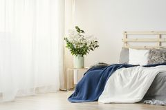 Navy blue blanket thrown on double bed with lights on bedhead st. Anding in white bedroom interior with plants on table and window with curtains stock image