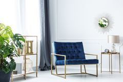 Navy blue chair. Standing in white room interior with golden furniture and decorations royalty free stock photo