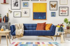 Navy blue couch with bright blanket and two cushions standing in. White living room interior with fresh flowers, gold lamp and gallery on the wall stock image