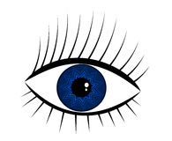 Navy-blue eye Stock Photo