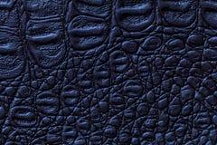 Navy blue leather texture background, closeup. Reptile skin, macro stock photos
