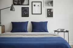 Navy blue pillows on bed between table and lamp in white bedroom interior with posters. Real photo. Concept royalty free stock photography