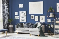 Navy blue room with gallery. Of pictures on the wall and lots of fashionable accessories royalty free stock photography