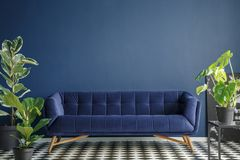 Dark blue living room interior stock image
