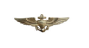 Navy gold wings isolated with path royalty free stock image