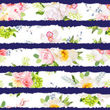 Navy striped print with bouquets of wild rose, peony, orchid, bright garden flowers and leaves Royalty Free Stock Images