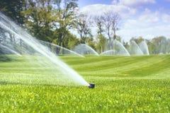 Nawadniać zielonej trawy przeciw niebieskiemu niebu z chmurami obraz royalty free