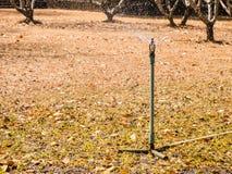 Nawadnia obszar trawiastego Zdjęcie Stock