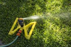 Nawadniać zielonej trawy w lecie Zdjęcie Royalty Free