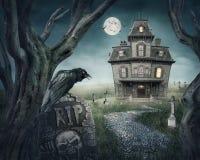 Nawiedzający dom ilustracja wektor