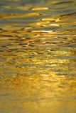 nawierzchniowa woda Fotografia Stock
