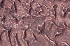 Nawierzchniowy niewygładzony kamień zdjęcie royalty free