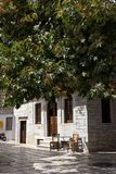 Naxos - Apeiranthos village, plane tree and white marble paved - Cyclades Greece. Typical greek tree in the street of Apeiranthos, old village of South Aegean royalty free stock image