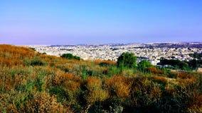 Naxxar-Grün - Malta Stockfotos