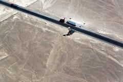 Nazca выравнивает руки и дерево Стоковые Фотографии RF