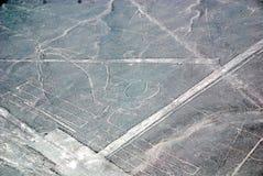 Nazca allinea il Perù Fotografia Stock Libera da Diritti