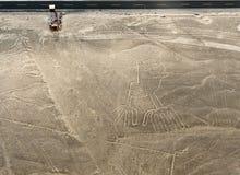 Nazca allinea le mani Fotografia Stock Libera da Diritti