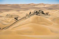Nazca Desert Sand Dunes In Peru. Royalty Free Stock Photo