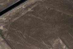 Nazca Lines Stock Image