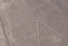 Nazca Lines. The figure of the spider in the Nazca Lines Stock Photography