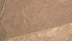 Nazca Lines Stock Photos