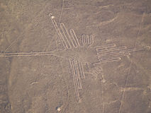 Nazca Lines. In the Peruvian Desert Royalty Free Stock Photos