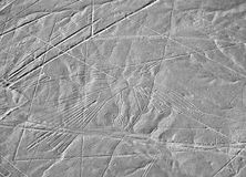 Nazca Lines. In the Peruvian Desert Stock Photography