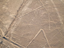 Nazca Lines. In the Peruvian Desert Stock Images