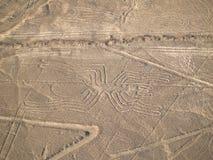 Nazca Lines. In the Peruvian Desert Stock Photo