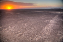 Nazca Lines in the beautiful sunset. Stock Image