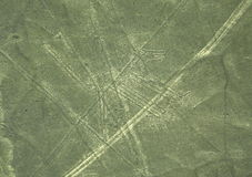 Nazca Lines: The Dog stock images