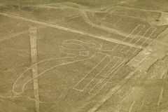 Nazca lines. Figure called Parrot, Nazca lines in Peruvian desert stock photography