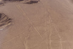 Nazca Lines and geoglyphs Royalty Free Stock Images