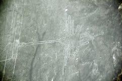 Nazca Lines, the hummingbird, Aerial View, Peru Royalty Free Stock Photos