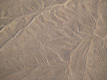 Nazca Lines (Monkey) Stock Photo