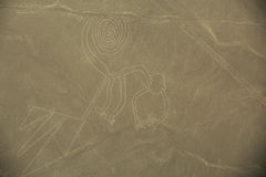 Nazca Lines,  The Monkey Stock Photos