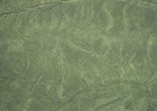Nazca Lines: The Monkey Royalty Free Stock Image
