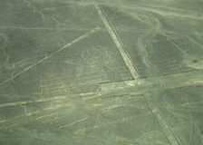 Nazca Lines: The Parrot Stock Image