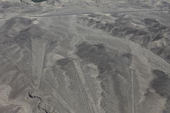 The Nazca Lines in Peru Stock Photos