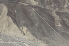 The Nazca Lines in Peru Royalty Free Stock Image