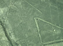 Nazca Lines: The Spider stock photography